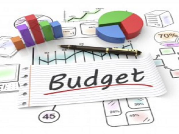 Business Skills In Healthcare Practice: The Budget  1.25 CME course image