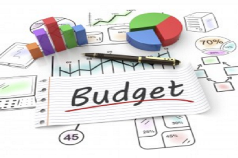Business Skills In Healthcare Practice: The Budget  1.25 CME